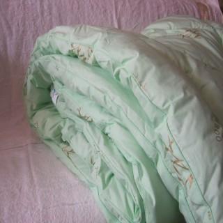 """Одеяло зимнее 400 гр с бамбуковым наполнителем """"Асика"""""""